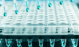 integragen-research-lung-cancer
